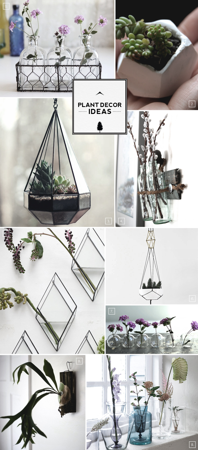 Decorating With Plants Decor