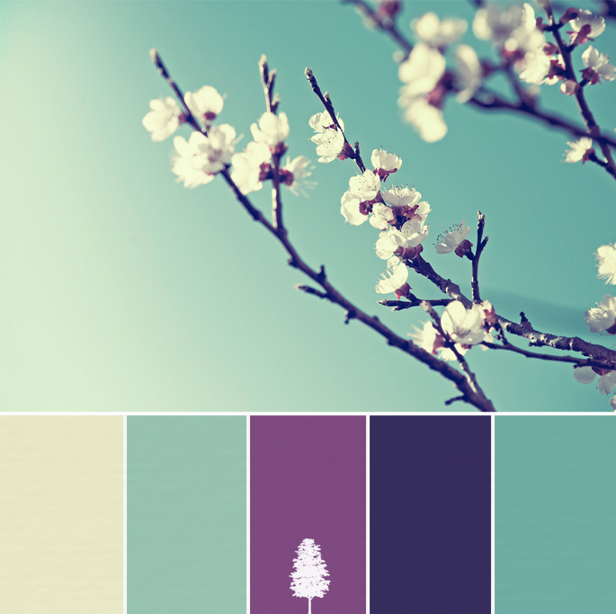 Teal and Purple Color Palette