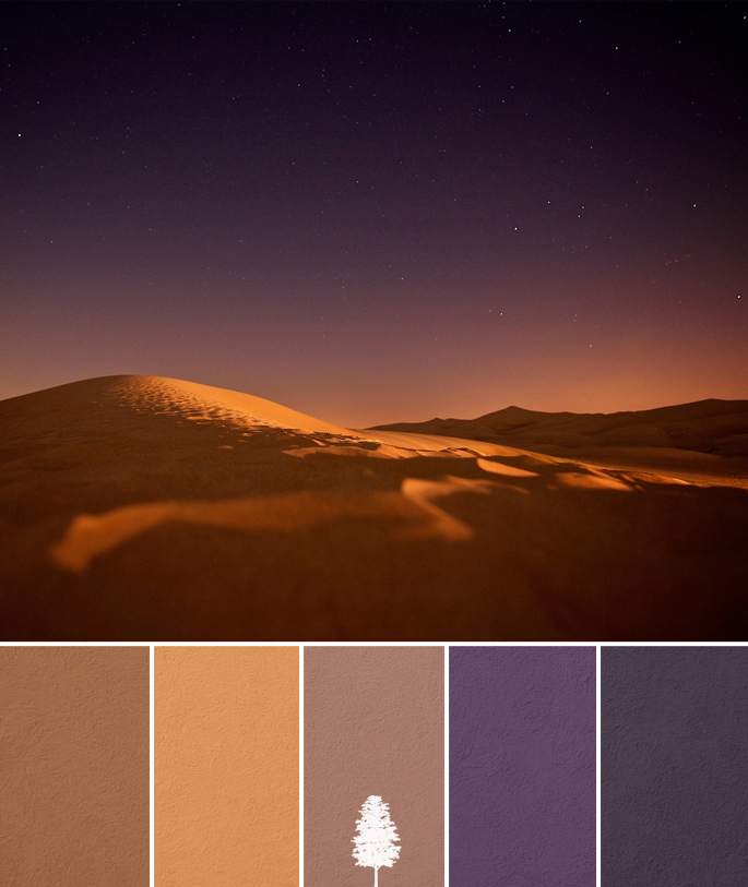 Home Palette Desert Night