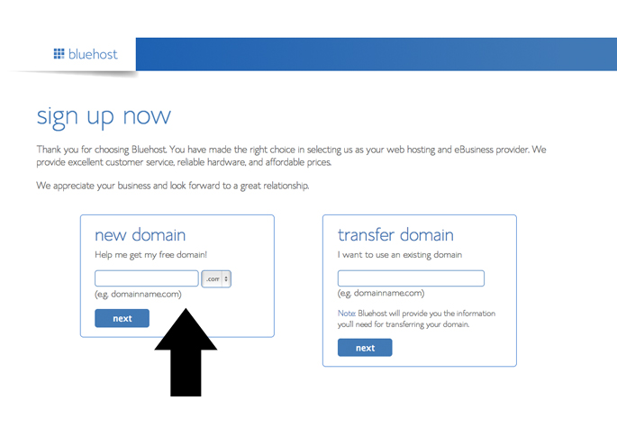 Domain Name Setup