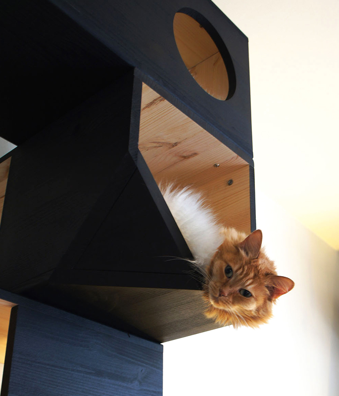 Cat Bed Tower