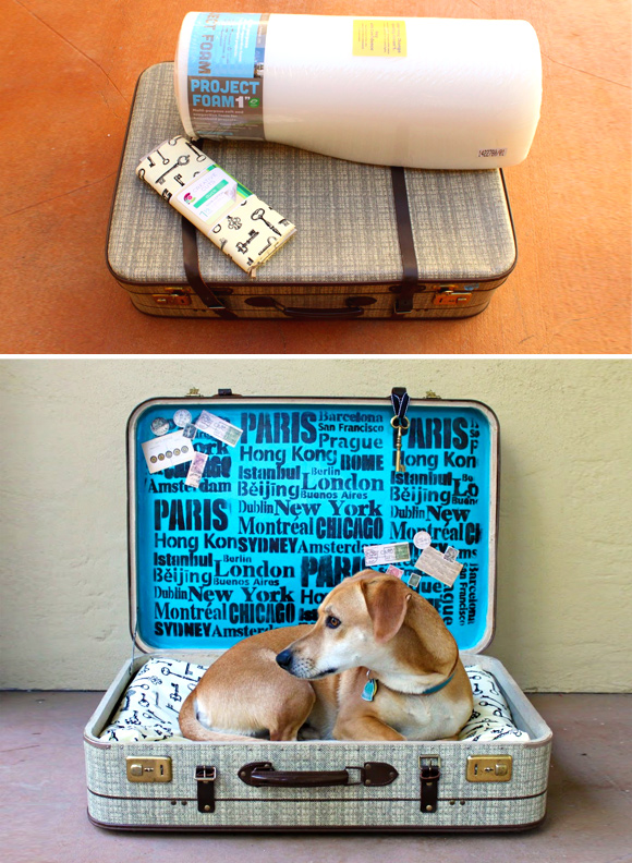 Making Sleeping Arrangements: Creative Ideas for DIY Dog Beds - #1 A suitcase dog bed